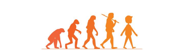 猿から人へイラスト